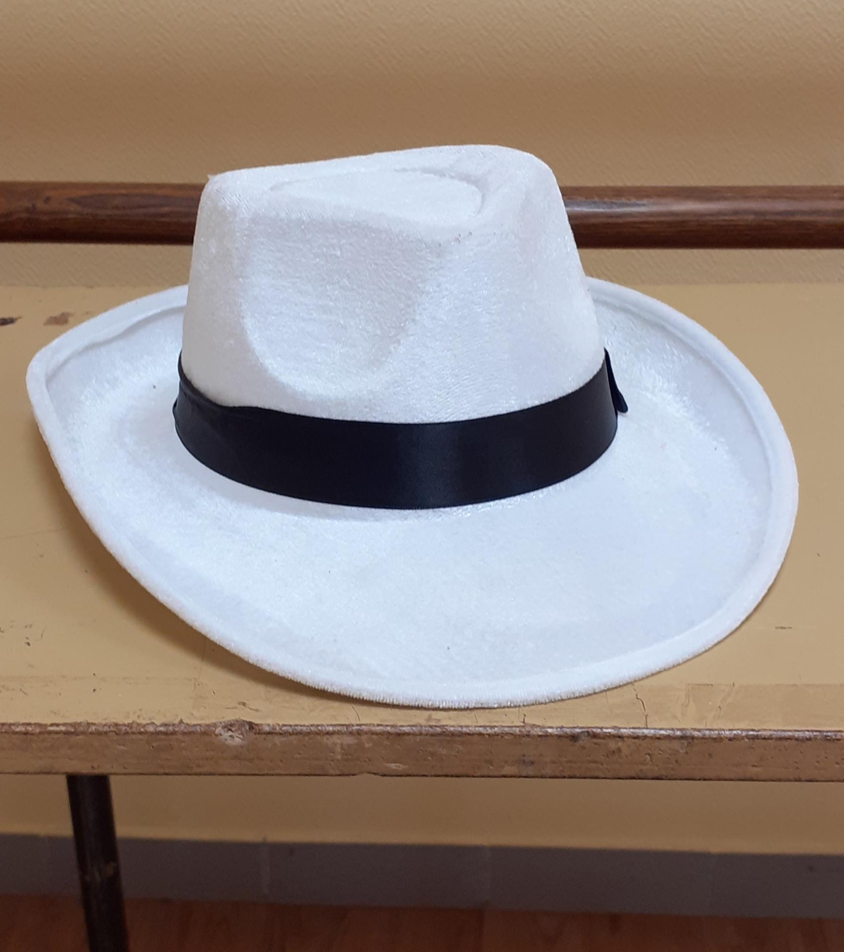Chapeaux cow-boy Blanc (x9) / Gris (x1)